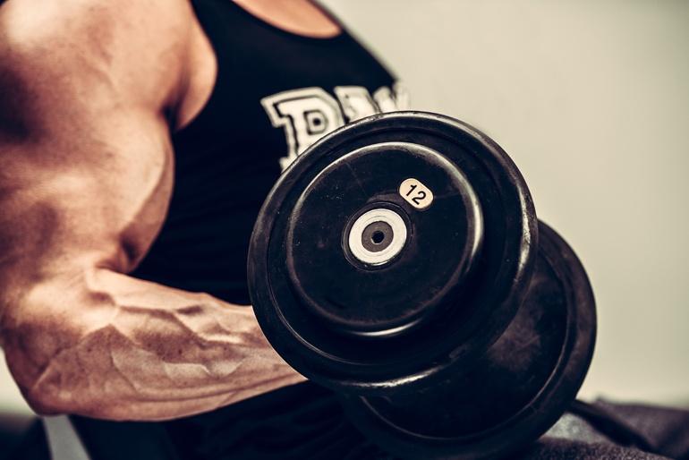 killer bicep workout routine